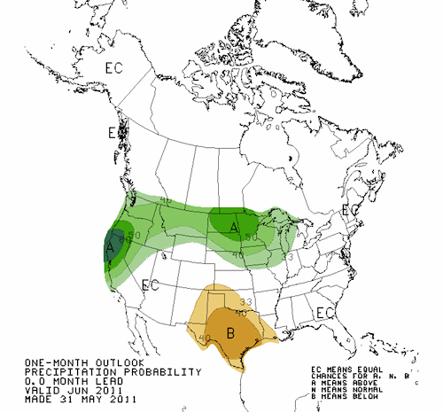 Precipitation Outlook June 2011