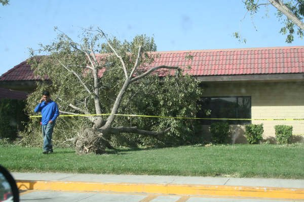 Sandstorm Damage in San Jacinto: October 22, 2007